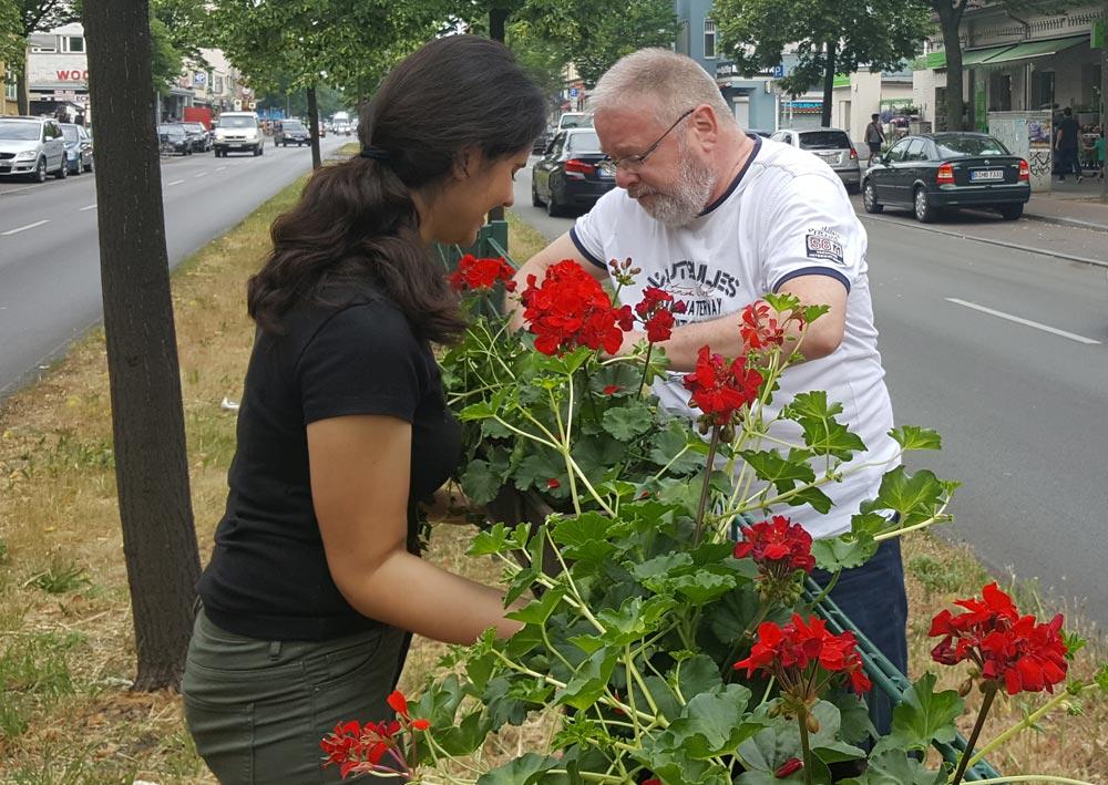 Vereinsmitglieder verschönern die Residenzstraße